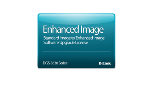 Standard Image to Enhanced Image Upgrade License for the DGS-3630-28TC Switch